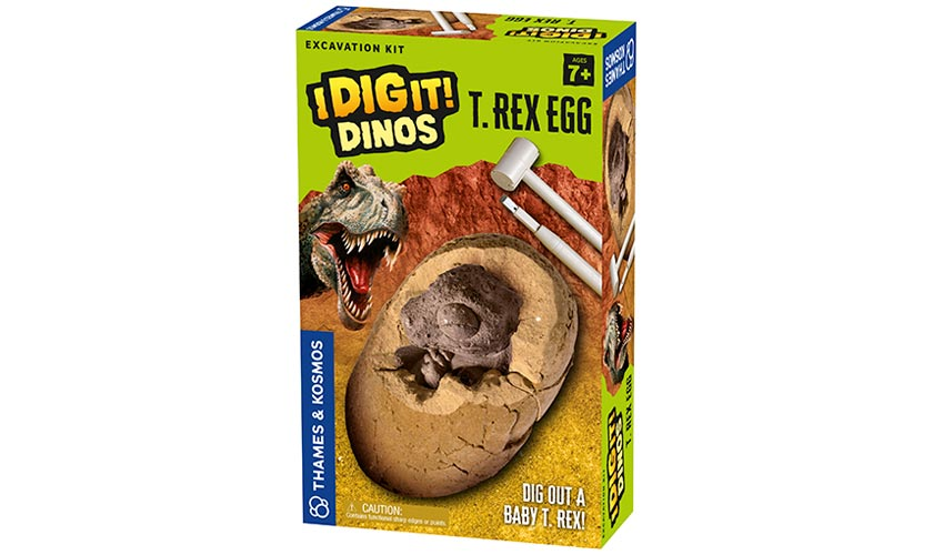 T Rex Egg Kit